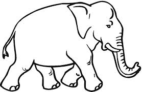 Another elephant comes aboard in an already-crowded office.