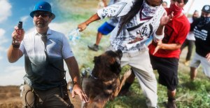 Private security guards turn attack dogs on protesters.